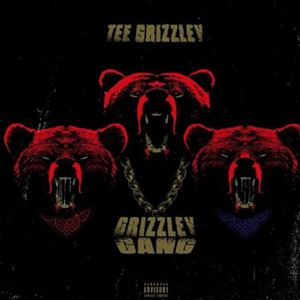Tee Grizzley Grizzley Gang Lyrics